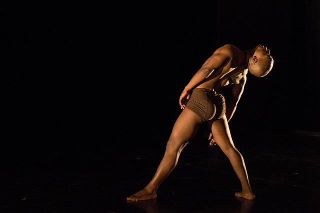 Feathers: SA choreographers fly high