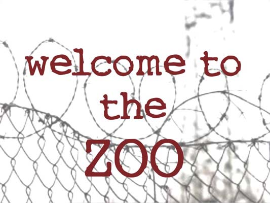Welcome to the Zoo: Women are beasts of burden